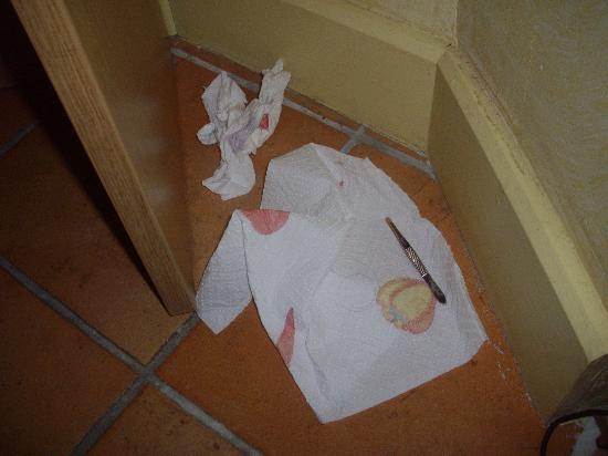 Appart'hôtel Odalys Palais Rossini : Trouvé sous le lit de la chambre