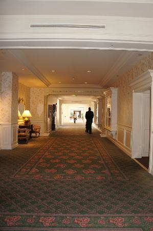 Disneyland Hotel: Couloirs interminables