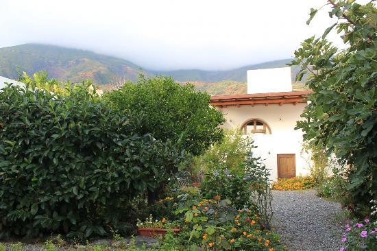 Hotel I Cinque Balconi: The garden
