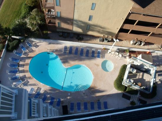 Forest Dunes Pool From The 9th Floor