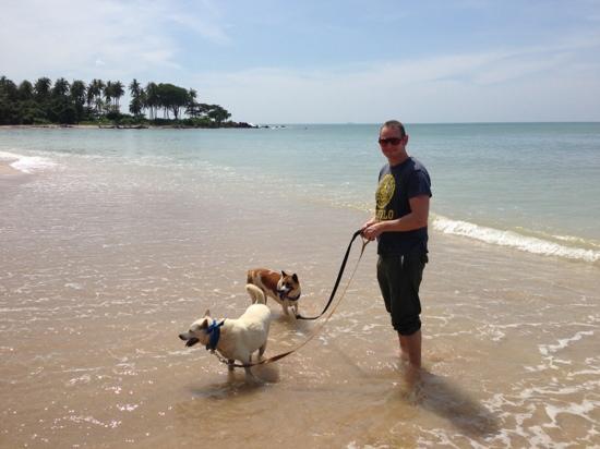Lanta Animal Welfare: The girls love the sea