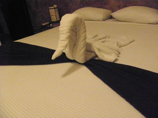 Hotel El Tukan: Gracias Patricia!
