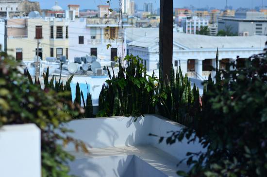 La Terraza de San Juan: rooftop terraza