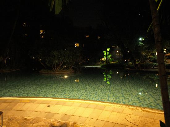 Swissotel Nai Lert Park: piscina y jardines