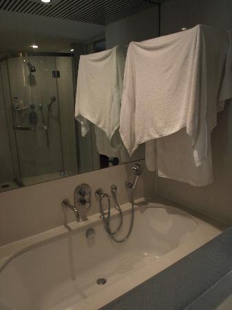 โรงแรมสวิสโซเทล นายเลิศ ปาร์ค: baño