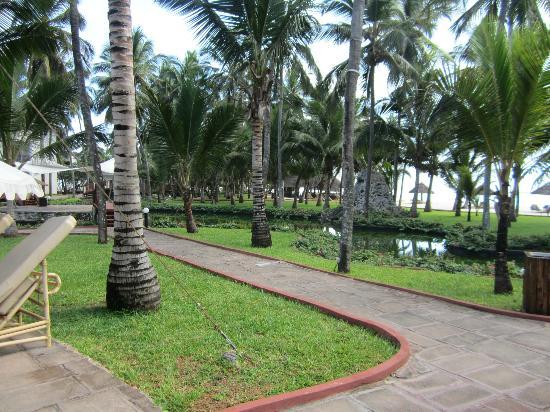 Diani Reef Beach Resort & Spa: Gartenanlage
