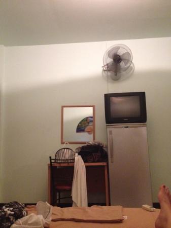 Viraporn's place: fridge and tv