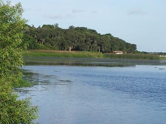 Lake Wales, FL: Kissimmee lake