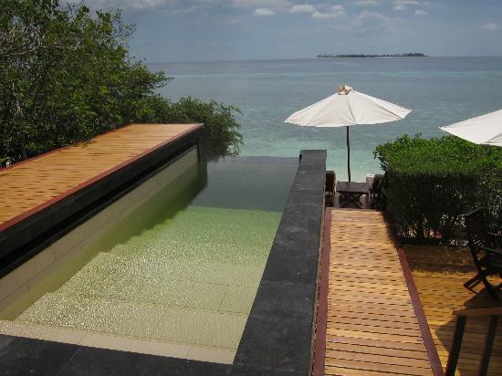 Wakatobi Dive Resort: Plunge pool