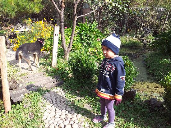 The Bruce Chalet: My baby with dog in the garden area