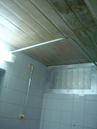 Square Hostel: ceiling in bathroom