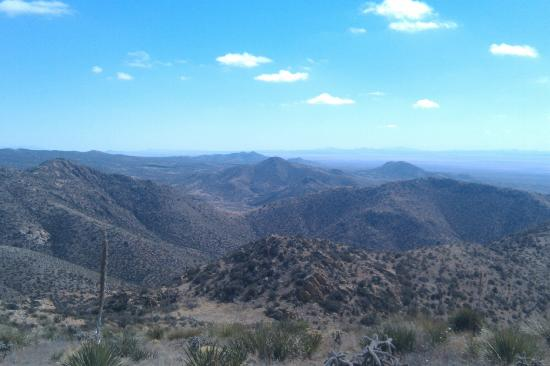 Gila Wilderness Area: The Gila National Forest