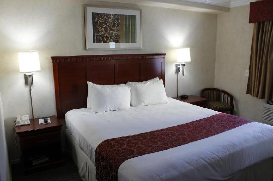 Days Inn Santa Monica: Standard King Bed