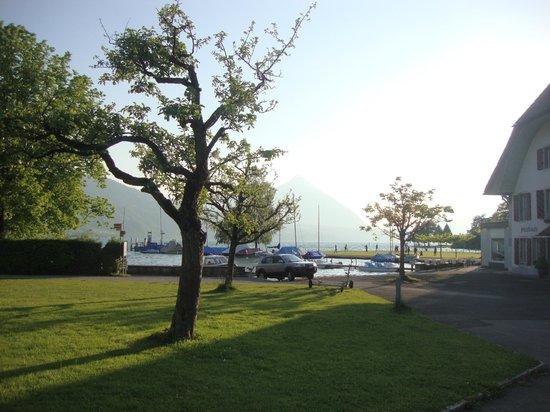 Neuhaus Golf and Strand Hotel: sunny day - resort campus