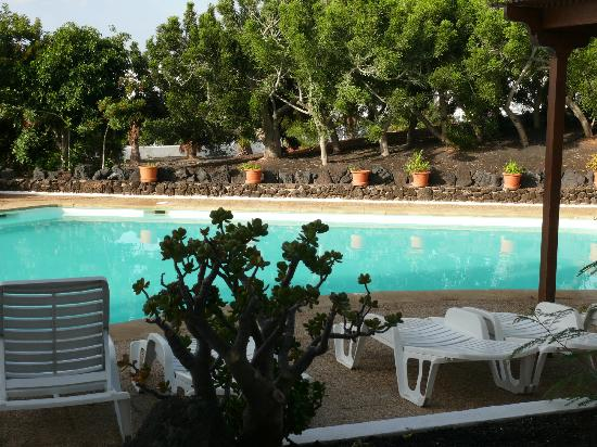 Apartamentos Camels Spring: Der gepflegte Pool