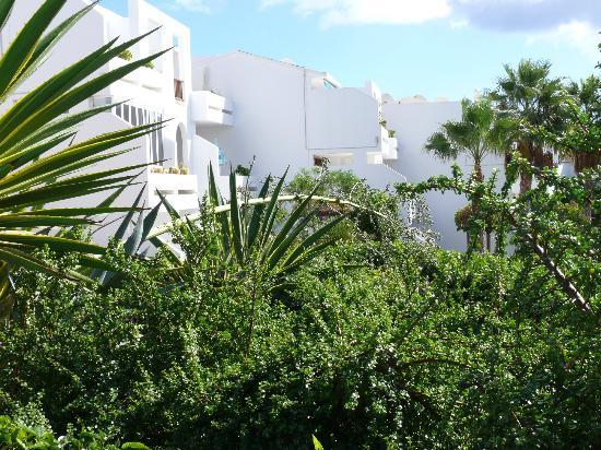 Apartamentos Camels Spring: Ansicht der Anlage vom Pool