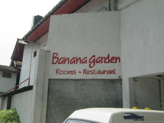 Banana Garden: out front