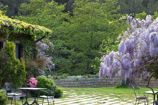 L'Agnata di De André : Garden