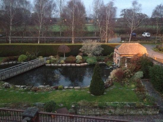 Springfield Country Hotel: view