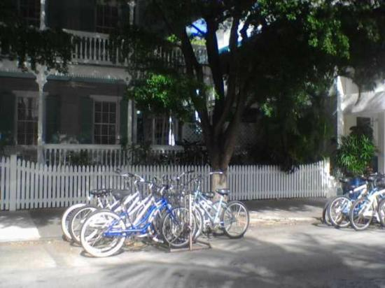 Eden House: Where the bikes play