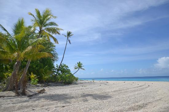 Pension Vaiama Village: Excursion au sud de l'atoll