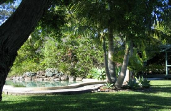 Hillcrest Mountain View Retreat: poolside gazebo and lovely big shade tree