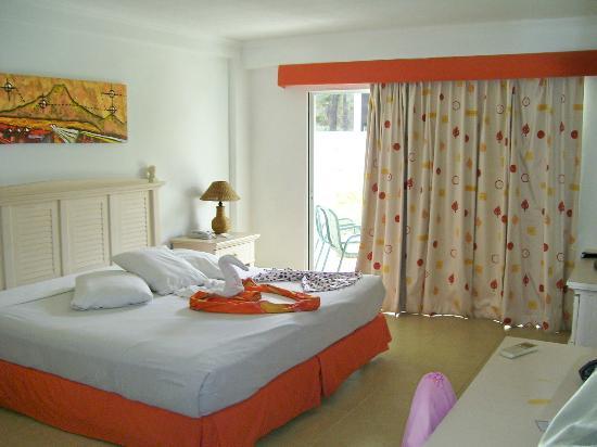 Isla Caribe Beach Hotel: Vista al jardín