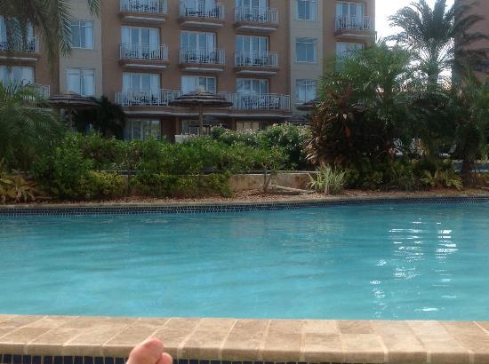 Pool bar picture of divi aruba phoenix beach resort palm eagle beach tripadvisor - Divi aruba beach resort ...