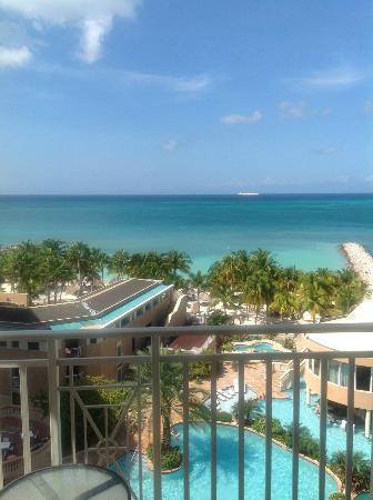 Divi Aruba Phoenix Beach Resort: Paradise