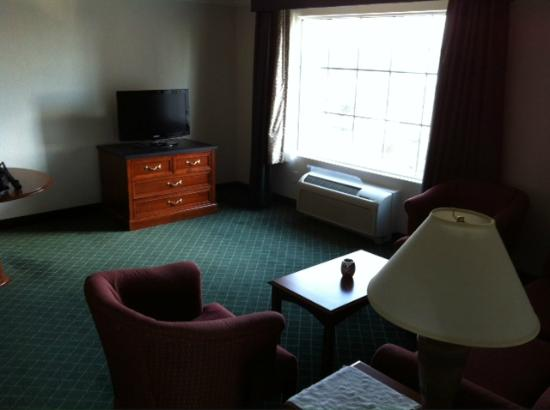La Quinta Inn & Suites San Antonio Riverwalk: Living Room