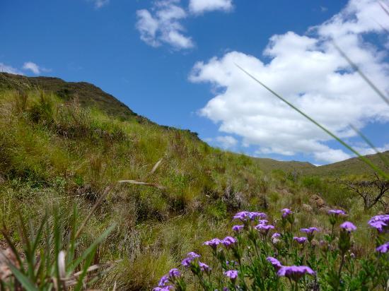Estancia Altos del Durazno : The countryside