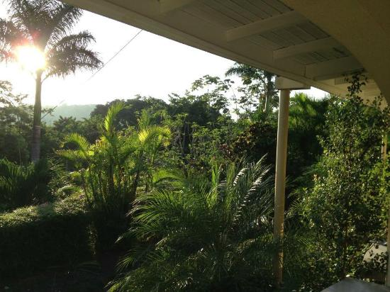 San Ignacio Resort Hotel: Additional view from balcony hammock is available