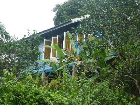 Adventure Eco Villas: View of the villa from the gardens