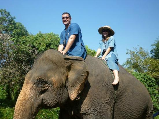 Magical Elephant Training: Riding the elephant