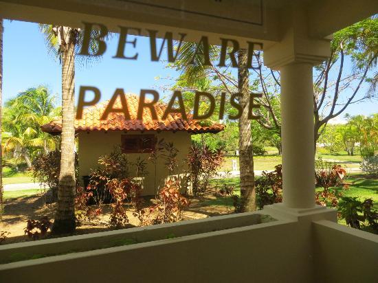 Gran Melia Golf Resort Puerto Rico: :)