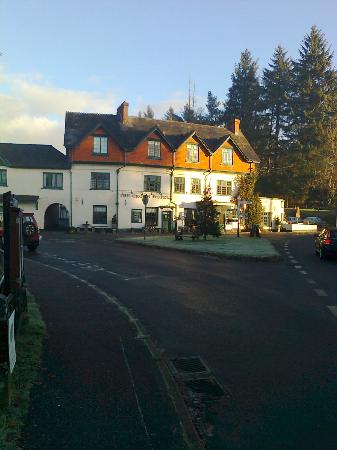Exmoor Lodge Guest House: Local Pub across the Green - more expensive specialty food