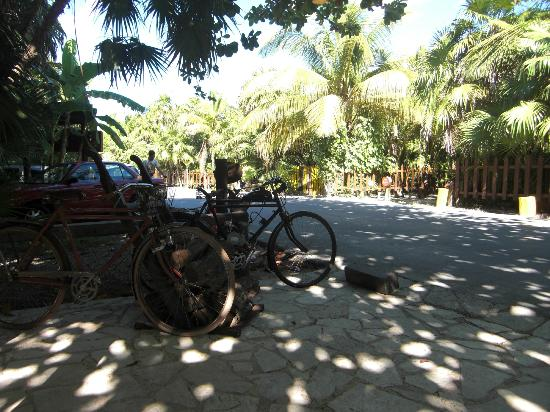 Nueva Vida de Ramiro: Parking at the restaurant