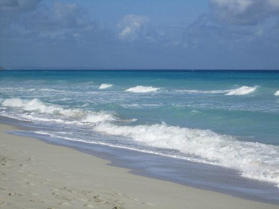 Hotel Acuazul: Incredible beach!