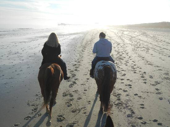 Horseback Riding Of Myrtle Beach Amazing Horse Ride On The