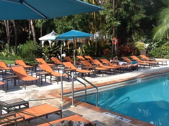 The Palms Hotel & Spa : Poolside