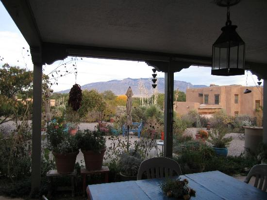 Chocolate Turtle Bed and Breakfast: View of Sandia Mountains from back porch