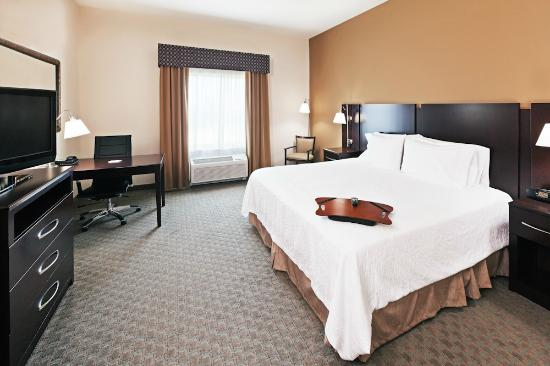 Hampton Inn & Suites Dumas: King guestroom
