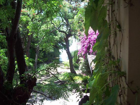 Posada de la Flor: Vista