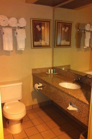 Comfort Suites: very nice