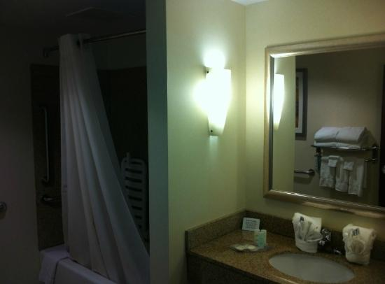 Comfort Suites Cicero - Syracuse North: Bathroom