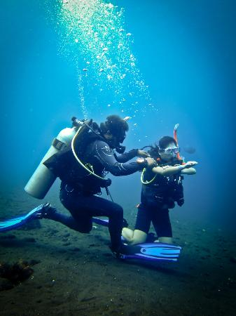 Joe's Gone Diving: Corileus teaching how to use compass
