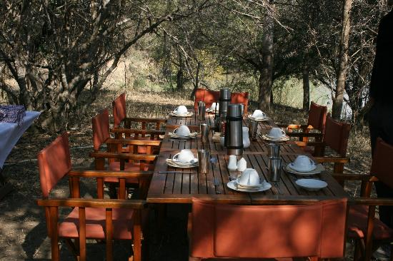 ‪‪The Vuyani Safari Lodge‬: Surprise Lunch outside during Safari. Fantastic.