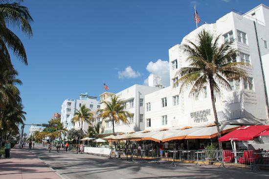 Beacon South Beach Hotel: Vista del hotel desde la ocean drive