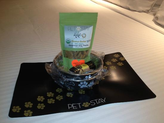 Harveys Lake Tahoe: Nice petstay welcome kit!