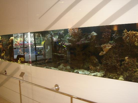 Le Lagon Hotel: Impressive aquarium in the lobby entrance